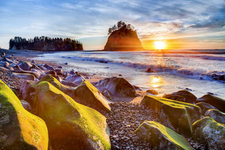 sitka: Sunset over the Pacific coast at Rialto beach near La Push in Olympic National Park, Washington, USA