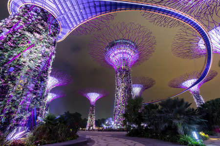 SINGAPORE- April 25: Night view of The Supertree Grove at Gardens by the Bay on April 25, 2015 in Singapore. Spanning 101 hectares, and five-minute walk from Bayfront MRT Station.