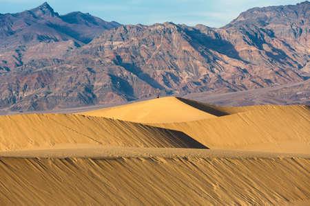Mesquite dunes in Death Valley, California, USA