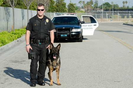 police dog: A K9 police officer with his dog.