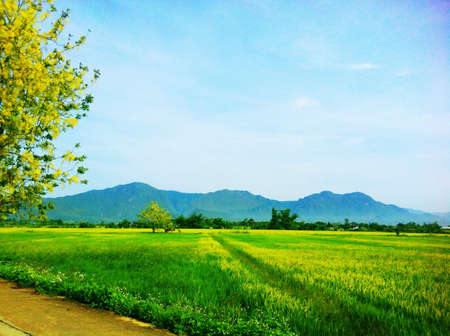 doi: Doi nang non mountain