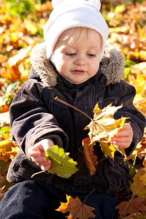 Cute child played by maple leaves. Golden autumn nature blurred background Stock Photo - 11963190