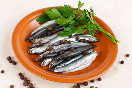 anchovy fish: Anchovy fish on a rustic plate with herbs parsley and spicy peppers