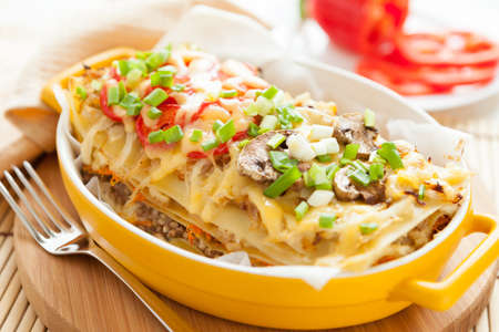 Italian lasagna dish with vegetables  Traditional mediterranean food Stock Photo - 16897759