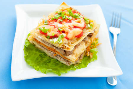 Freshly baked homemade lasagna with vegetables on a plate. Traditional italian food Stock Photo - 17575022
