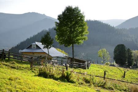 farmstead: Rustic farmstead in the mountains. Sunny day