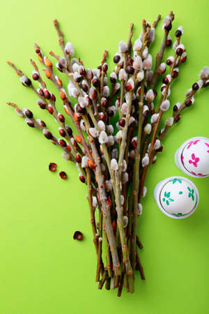pussy willow: Pussy willow branch and Easter eggs. Celebration