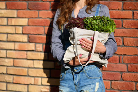 linen bag: Linen Bag with fresh leaf Lettuce Salad in woman hands against the background of a brick wall Stock Photo