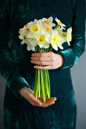 Bouquet daffodil in the hands of women. Sring flowers