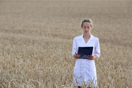 Woman agronomist or a scientist or a student with document in her hand in the wheat field. Agricultural business Reklamní fotografie