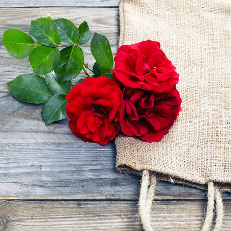 red rose on wooden background photo