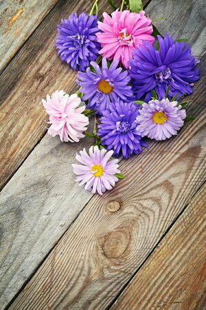 aster flowers: Aster flowers bouquet on wooden background Stock Photo