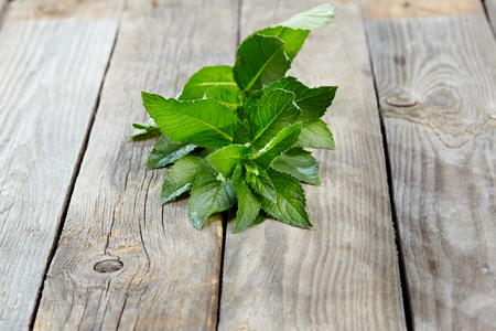 peppermint: peppermint on wooden table