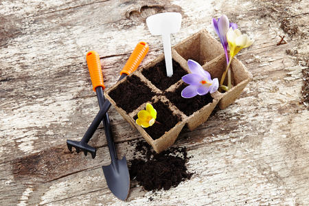 garden tools (shovel, rake, peat pots ) on old wooden background