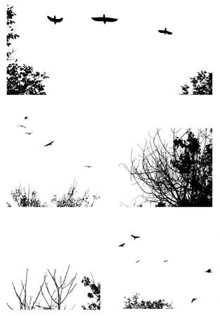 birds in flight: Black silhouettes of trees and flying birds isolated on white background