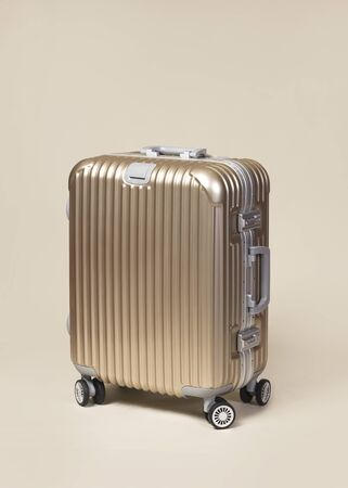 hard stuff: Golden trolly handbag with silver handle large Stock Photo