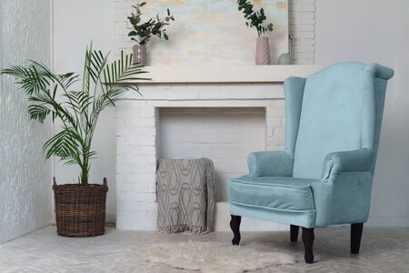 Blue armchair and indoor plants and fireplace in the background. Classical living room furniture and potted plants