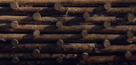 Retaining Wall made of stacked raw wooden logs