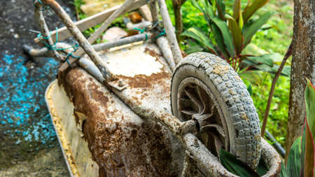 Close up view of tire of an old rusty 3-wheeled wheelbarrow with plant nature background. Using to carry heavy stuff such as cement, tools, equipments and bricks at the construction site. Stok Fotoğraf