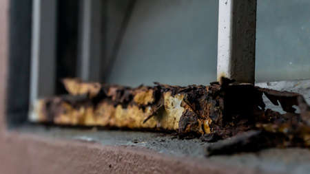 Close up view of the old rusty window fence. Damaged, broken and rotted of fence metal. Painting peeling. Selective angle and focus.