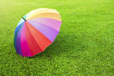 A rainbow color umbrella on green grass lawn with sunlight Imagens