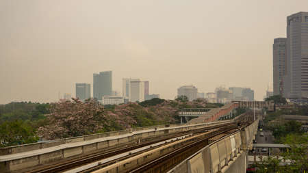 Bangkok, Thailand-February 7, 2020: The cloudy sky with PM 2.5 air pollution covering Bangkok city area, view from Bts train station to sky train railway and pink Trumpet tree flower know as Pink Tecoma or Tabebuia rosea plant begin blooming at Chatuchak