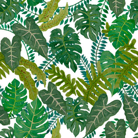 Watercolor Hand Painting Illustration Of Tropical Leaves Trees Stock Photo Picture And Royalty Free Image Image 159385401 Monstera leaves are trending these days! 123rf com