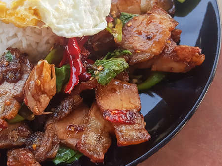 serv: Close-up,Thai food:Kao Pad Kra Praofried basil crispy pork serv with rice,process color