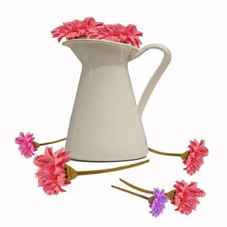 flowers in white jug for decorated  Isolated  photo