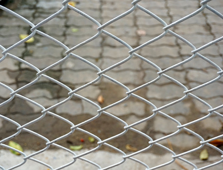 Barb wire fence photo