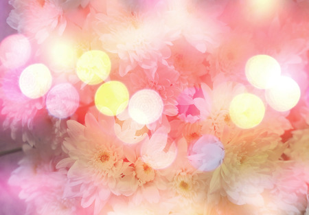 delicacy: abstract flower background. flowers made with color filters