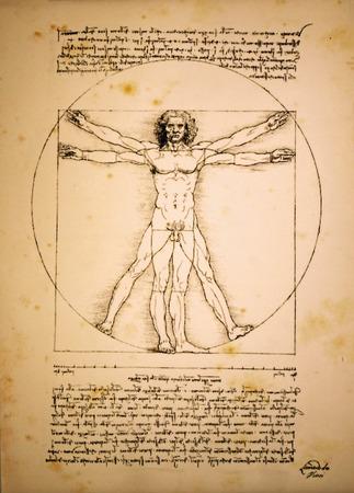 leonardo da vinci: Vitruvian man of Leonardo Da Vinci