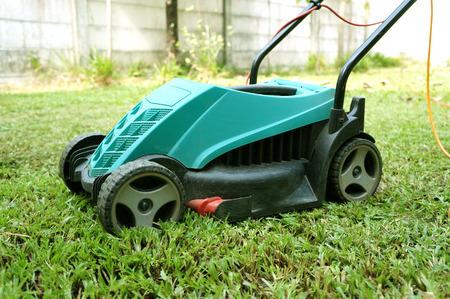 turf flowers: Lawn mower