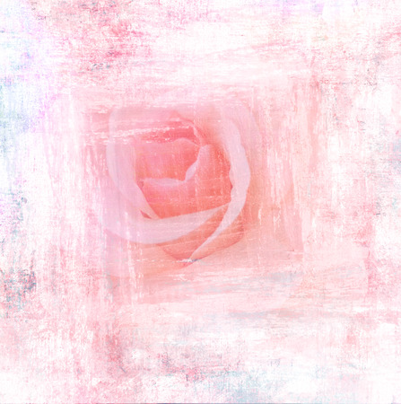 watercolour background: Flower beautiful rose, art paint illustration for background
