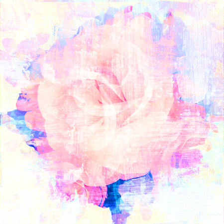 yellow flower: Rose art with fade abstract texture Stock Photo