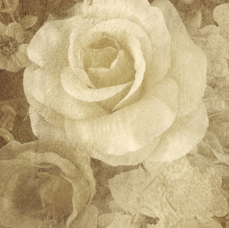 grunge old rose art paint for background