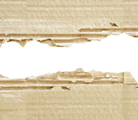 lacerated: two scraps of torn corrugated cardboard for background