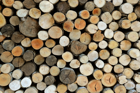 winters: firewood alpine winters for background