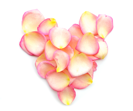 Heart of pink rose petals on white background