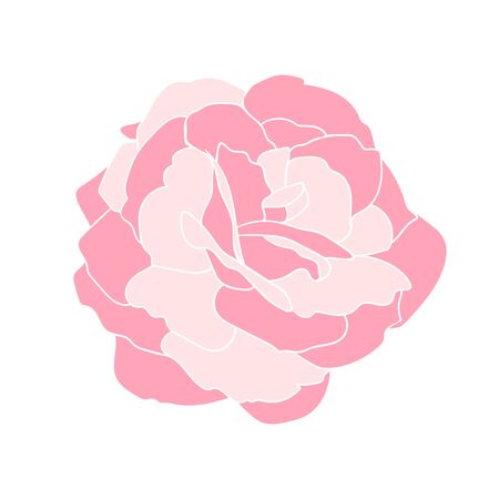 Gentle pink rose flower with white outline. Hand drawn floral clip art for postcards or logo. Design for stickers. Stock vector illustration isolated on white background. Illustration