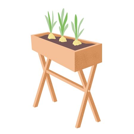 A wooden box with earth and bulbs growing in it. Young onion sprouts. Hobby or business gardening and breeding plants. Stock simple flat vector illustration isolated on white background.