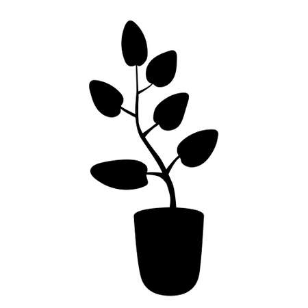 Black silhouette houseplant in flower pot. Plant breeding and a home garden are an ecologically friendly hobby.