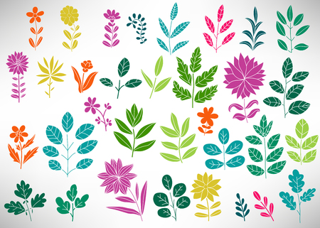 Floral Set of colorful doodle elements, tree branch, bush, plant, leaves, flowers, branches petals isolated on white. Collection of flourish elements for design. Vector illustration.