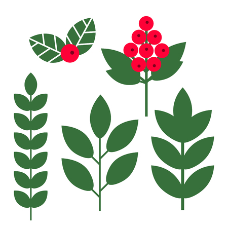 Set of plants, tree branches, flowers, leaves, berries isolated on white background. Vector illustration.