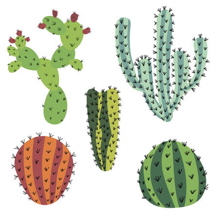 Set of doodle cactus isolated on white background. Иллюстрация
