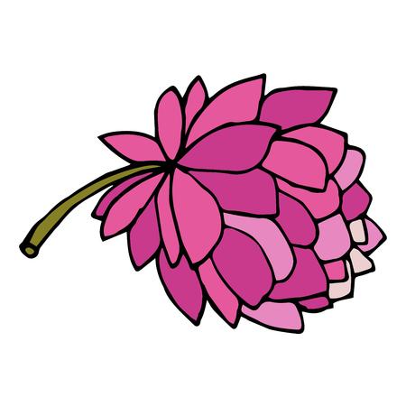 Cartoon doodle peony flower isolated on white background. Vector illustration.