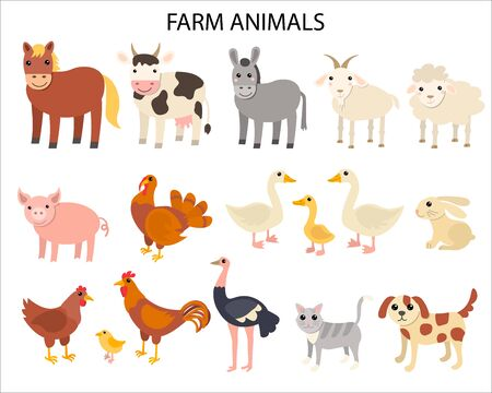 Cartoon farm animals in flat style isolated on white background. Horse and cow, donkey and sheep, pig and turkey, goose and rabbit, hen and cock, ostrich and cat, dog and goat. Vector illustration.