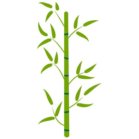 Cartoon bamboo forest. Tropical floral element for design. Nature. Rainforest in Asia. Vector illustration.