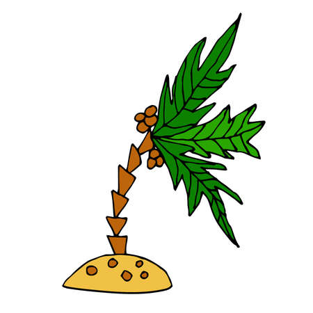 Cartoon doodle coconut palm on the little island isolated on white background. Tropic plant in childlike style. Vector illustration.