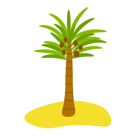 Cute cartoon palm with coconuts on the beach in flat style isolated on white background. Vector illustration.